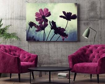 Canvas Print | Good Morning Sunshine Cosmos, South Africa | Printable Wall Art | Canvas Wall Art | Canvas Wall Hanging