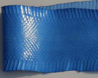 Genuine leather blue Tyrolean snake skin