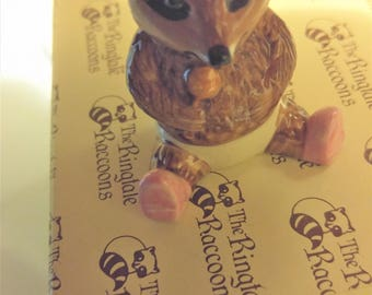 RINGTALE RACOON Baby POPPET by Hummelwerk #7125 New in the box