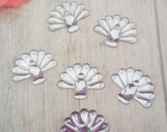 6 appliques to stick shape White Peacock acrylic