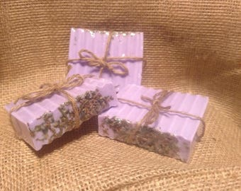 Lavender with Lavender Flower buds