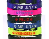 Personalised Collar, Cat, Kitten, with Break Away Safety Buckle, Bell, I.D. Tube