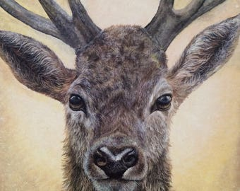 Stag Reindeer Card for Christmas or Birthday