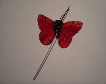 Red feather butterfly