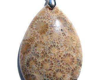 Pendentif corail fossilisé créme et beige et bélière argenté de 19mm.