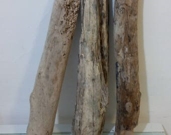 3 pieces of natural driftwood+ 1 decorative gift