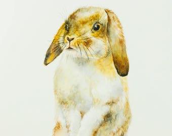Bunny Rabbit Watercolor Painting Baby Bunny Watercolor Nursery Wall Art Forest Woodland Animal Nursery Decor Bunny Gift Original Watercolor