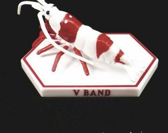 V Band Crystal Red 3D Shrimp Model