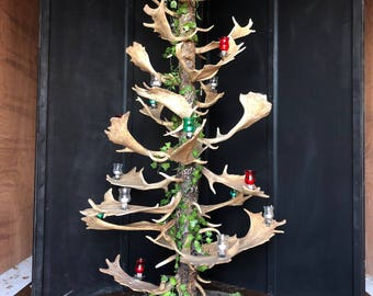 Stunning and unique fallow deer antler Christmas tree