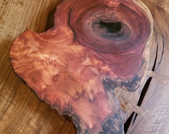 Redwood Burl serving platter
