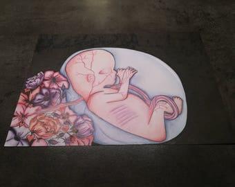 Fetus painting