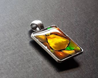 Ammolite Jewelry, Necklace Pendant