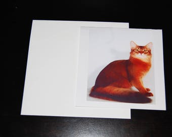 Abyssinian Photo 5x5 Notecard with Envelope