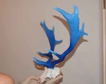 Fallow Deer Oil Painting Antlers