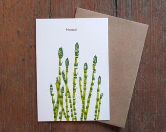 Botanical linocut letterpress blank card Horsetail