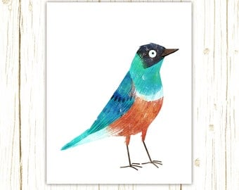 Superb Starling Print -- bird art -- colorful bird art by stephanie fizer coleman illustration