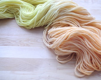 Hand dyed Yarn - worsted weight - approx. 220 yds.