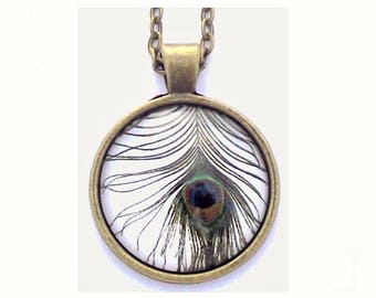 """Black Feather Photo Glass Necklace 30"""" Antiqued Bronze Chain"""
