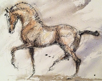 Equine art horse dressage piaffe ink watercolour watercolor line and wash