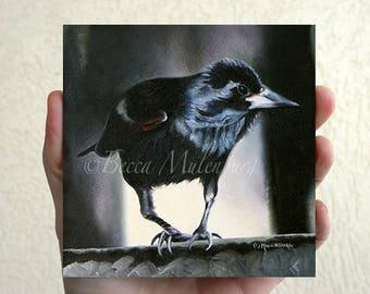 Red-winged Blackbird Original oil painting miniature wildlife nature fine art