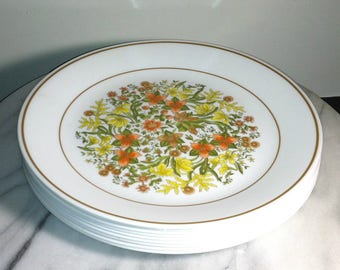1970s Corelle Livingware Indian Summer Dinner Plates Set of 9 / Vintage Corelle Indian Summer Dinner Plates Set of 9