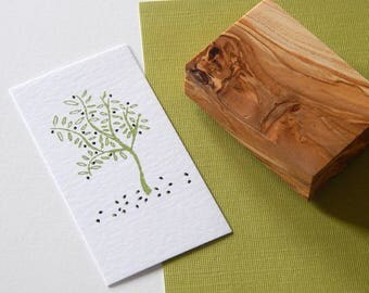 Young Olive Tree Stamp - available in 2 sizes