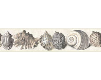 NY4895BD Pearlized Tan Taupe Seashell Wallpaper Border
