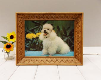 Vintage 3D Framed Poodle Picture---Lenticular Photograph--- 1969 Universal Statuary Corp. of Chicago