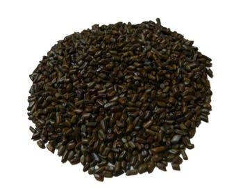 Cassia Tora Linne Tea