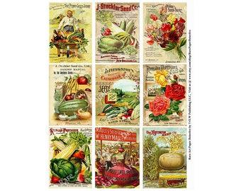 Antique Seed Pack, Vintage Seed Catalog, Printed Sheet, Farmer's Market Sign, Old Ephemera, Farm Paper Arts, Garden Decor, Potting Shed, 81c