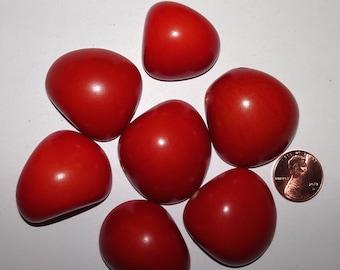 7 Orange Tagua Nut Bead, Top Slices, Organic Beads, Natural Beads, Vegetable Ivory Beads, EcoBeads 4