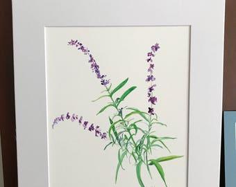 Blue salvia watercolor giclee print, floral art home decor, 11x14 inch white matte