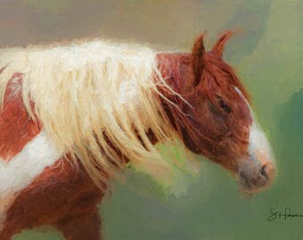 Tango - Painting - Wild Mustang of Sand Wash Basin, Wild Horses, sand wash basin wild horses, Colorado stallion, Son of Picasso