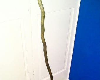 Walking Stick Emmaus Hand Crafted Whittled Carved Soaptree Yucca Lightweight Sturdy Gift Guide Men Women Hikers