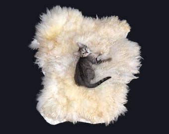Cruelty Free, Delaine Merino, Cheviot Cross, Cat Bed, Pet Bed, Dog Mat, Felted Wool Fleece, Ethical Sheepskin, Natural Cat Bed, Throw Rug