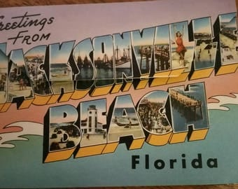 Kitschy Souvenir from Florida,  Post Card, Lithographs
