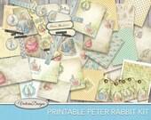 Peter Rabbit Printable Kit Scrapbooking kit junk journal paper pack elements tags paper crafting instant download digital sheet - VDKIBP1750