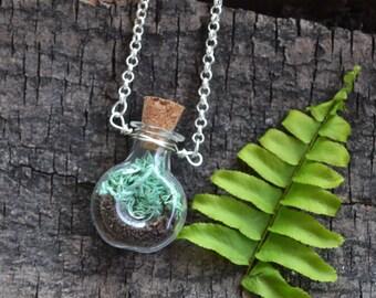 Moss Necklace, Terrarium Jewelry, Terrarium Necklace, Terrarium, Moss Vial, Moss Jewelry, Plant Necklace, Garden Jewelry, Nature Lover, Moss