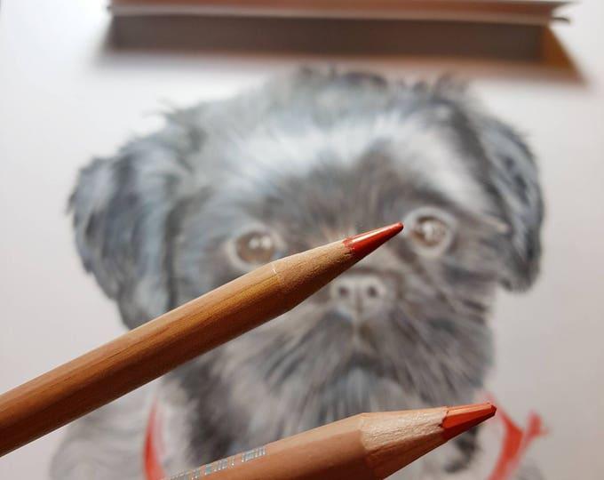 Portret van je eigen huisdier. Formaat papier:20x30 cm
