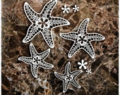 Reneabouquets Beautiful Board Starfish With Accents Laser Cut Chipboard Set  Double Side Vintage White Coated In Size Large Or Small