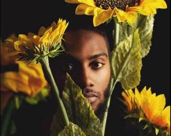 Digital File - Black Man w/ Facial Hair Posing Between Large Yellow Sunflowers on Black Backdrop