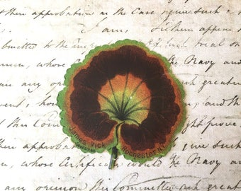 Pretty Little Victorian Era Begonia Leaf Trade Card for Seed Company