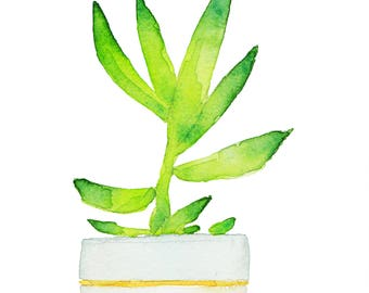 Aloe of my original illustration Garden Witch Potion Terrarium Nature Plants Watercolor Gift for him Gift for her Art