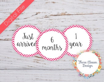 Pink Chevron Printable Monthly Stickers