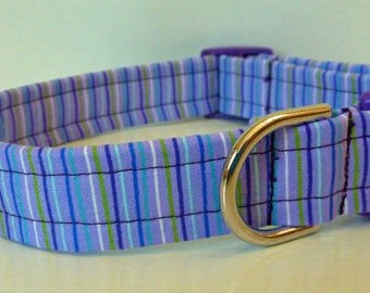 """Dog Collar - Purple Blue and Lime Green Stripes - """"Polly"""""""