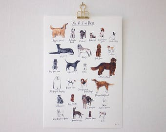 An A-Z of Dogs (unframed print)