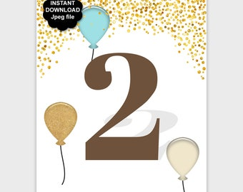 2 Year Old Birthday Decor, 2nd Birthday Party Sign, Printable Second Birthday Table Sign, Gold Confetti Aqua Brown 8x10 11x14 DOWNLOAD - PP7