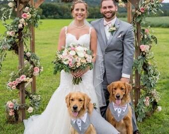 Dog formal wear | Etsy