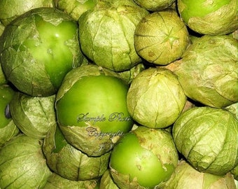 Tomatillo Verde 50 Vegetable Seeds See Recipe Compact Vines Fruit bursting with Flavor- Salsa - Fresh in salads Pickled canned