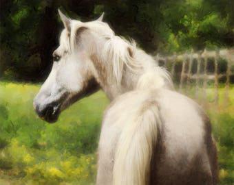 Green Pastures. Equine art.